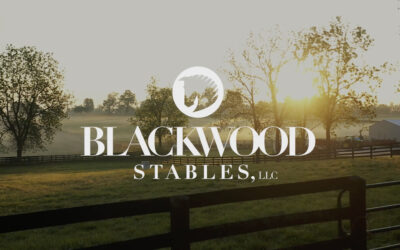Blackwood Stables